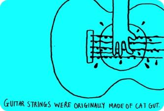 As cordas de violões eram feitas originalmente com os intestinos de gatos.