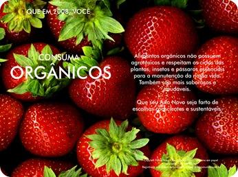 2008 orgânicos
