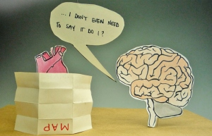 Heart-Brain-082113-5